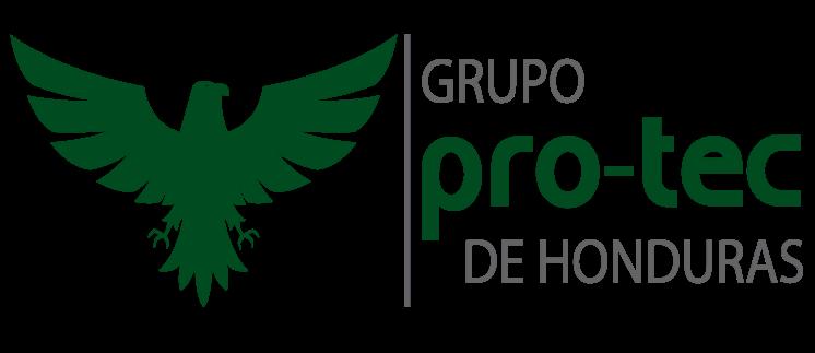 Grupo Protec